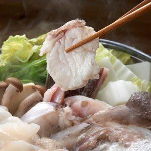 ふるさと納税の幻の食材 天然くえ500g(鍋用、2~3人前)