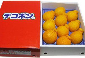 ふるさと納税の高松産季節の果物【ハウスデコポン】