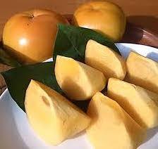 ふるさと納税の太秋大甘柿
