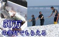 ふるさと納税で貰える漁業体験ツアー