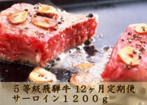 ふるさと納税でおすすめの5等級飛騨牛 サーロインステーキ用4枚(約1200g)