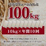 ふるさと納税 米 100kg