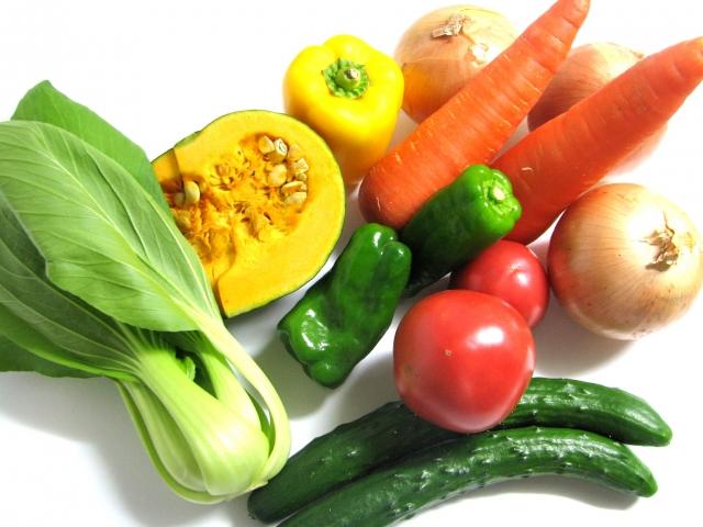 ふるさと納税 野菜 定期便 おすすめ